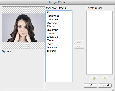 Image effects dialog.png